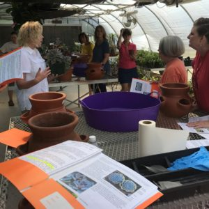 Succulent Workshop in the VBAS Greenhouse